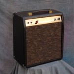 bacorn_amps_40