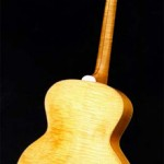 mandocello_back