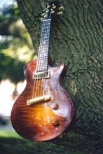 5 String Mandolin on a Tree Branch