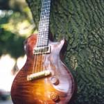 5 String Mandolin on a Tree Branch