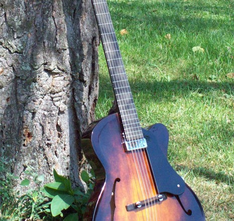 jh-906-custom-archtop-guitar-leaning-tree